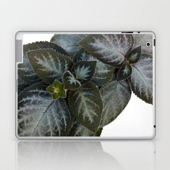 Gesneriad Laptop & iPad Skin