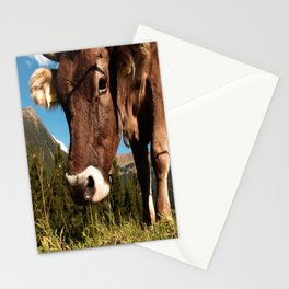 cute cow close Stationery Cards