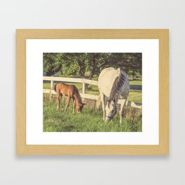 Mare and Foal // Horses Framed Art Print