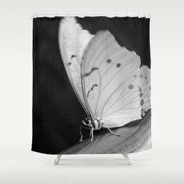 Papillon B/W Shower Curtain