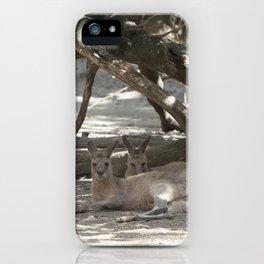Kangaroos resting iPhone Case