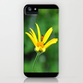 Yellow flower & visitor  iPhone Case