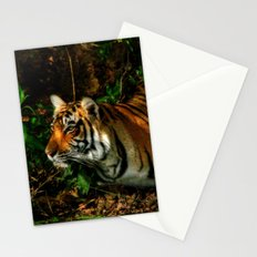 Bengal Beauty Stationery Cards
