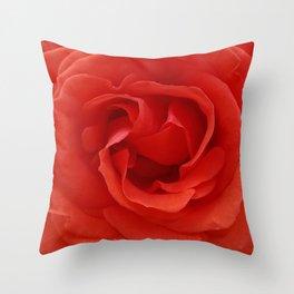 Splendid Red Rose Throw Pillow