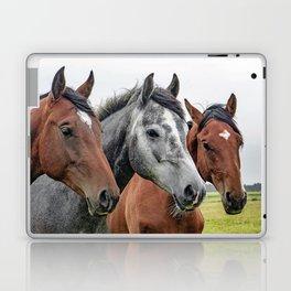 Wonderful Horses Laptop & iPad Skin