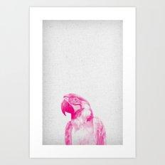 Parrot 02 Art Print
