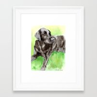 labrador Framed Art Prints featuring Labrador by Martynas Juchnevicius