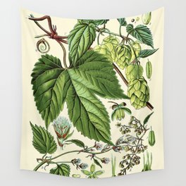 Humulus lupulus (common hop or hops) - Vintage botanical illustration Wall Tapestry