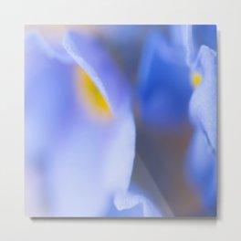 Forget-me-not Wildflower Extreme Macro #decor #society #buyart Metal Print
