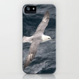 Seagull flying over Arctic Ocean iPhone Case