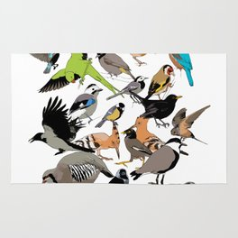 color birds Rug