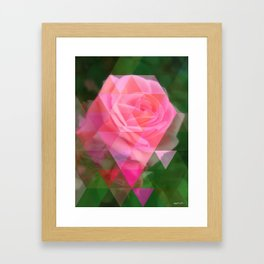 Pink Roses in Anzures 2 Art Triangles 1 Framed Art Print