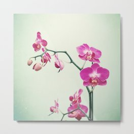 Orchid Flower Photography, Pink Mint Floral Art, Orchids Floral Photo, Botanical Nature Art Metal Print