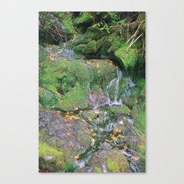 cloud adventure 4 1/2 Canvas Print