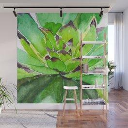 green succulent 3 Wall Mural