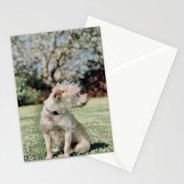 Perla Stationery Cards