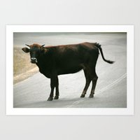 bull Art Prints featuring BULL by Azniv's Photos