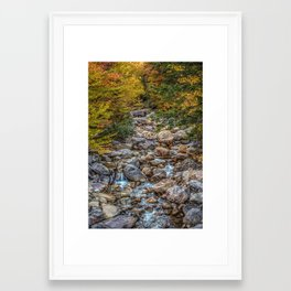 Streaming Autumn Framed Art Print