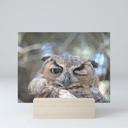 Owl Wink Mini Art Print