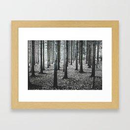 Coma forest Framed Art Print