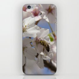 Honey Bee Pollinating Cherry Blossom iPhone Skin