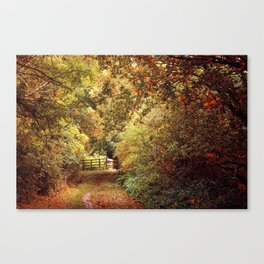 Autumn Weavers Canvas Print