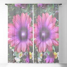 Look Deep Into Nature Sheer Curtain