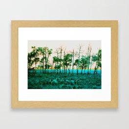Turquoise Trees Framed Art Print