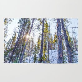 Sunset in the forest Rug