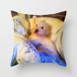 Ivan the Dog Schnoodle in Bed Throw Pillow