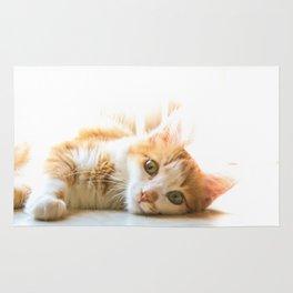 Tippy cat Rug