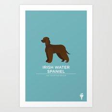 Irish Water Spaniel Art Print