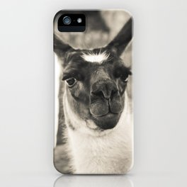 106 iPhone Case