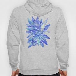 Aloe Vera – Blue Palette Hoody