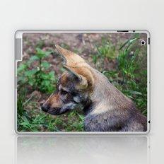 Canis Lupus Lupus Laptop & iPad Skin