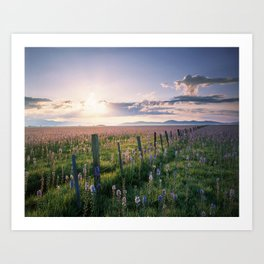 Camas Marsh Sunrise Art Print