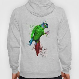 Parrot Painted Hoody