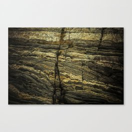 stone texture as background Canvas Print