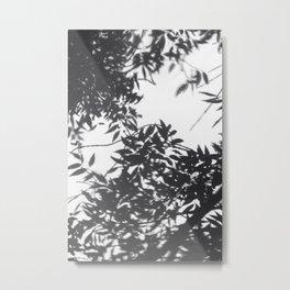Reflejo Metal Print