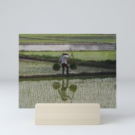 Rice fields of Vietnam Mini Art Print