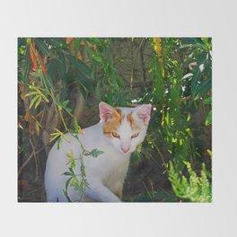 Yellow eyed cat Throw Blanket