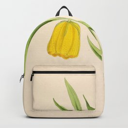 Fritillaria Moggridge Backpack
