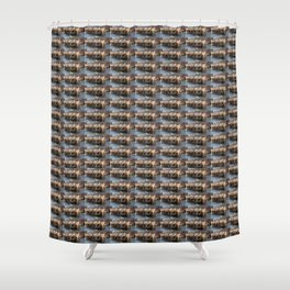 National Western Stock Show Parade Shower Curtain