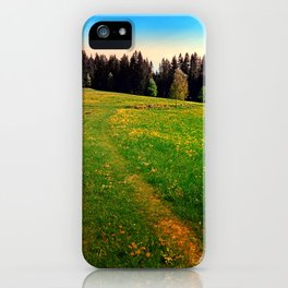 Outdoors in sunny spring iPhone Case