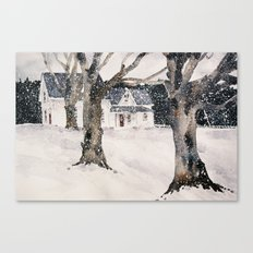 February snow Canvas Print