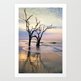 Botany Bay 1 Art Print