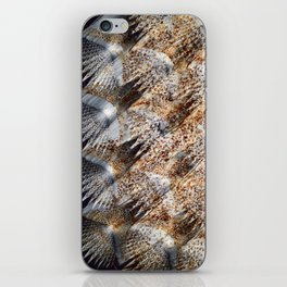 Skin of Common Sole iPhone Skin