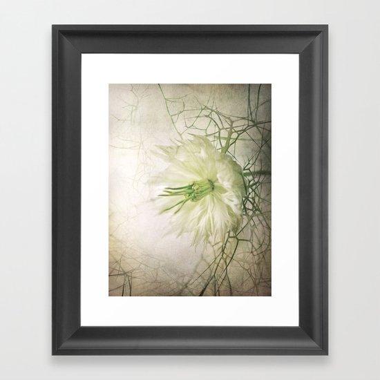 Love in the Mist Framed Art Print