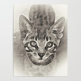 Cute Bengal Kitty Sketch Poster