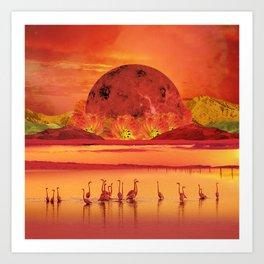 Flamingos sunset Art Print